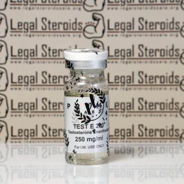 Testosterona E 250 mg Prime