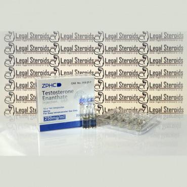 Testosterone Enantate U.S.P. 250 mg Zhengzhou